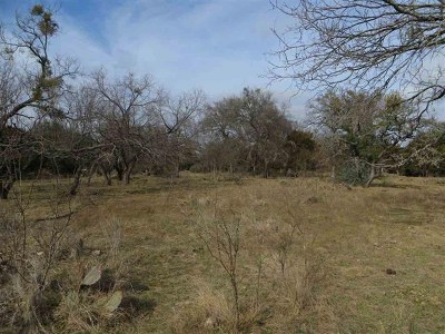 Lampasas Farm For Sale: 2632 County Road 1403