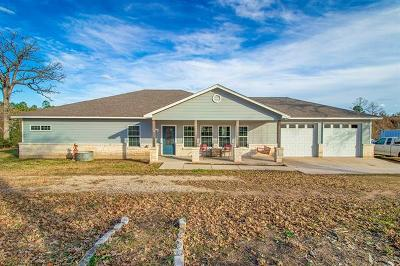 Bastrop County Single Family Home For Sale: 289 O Grady Rd