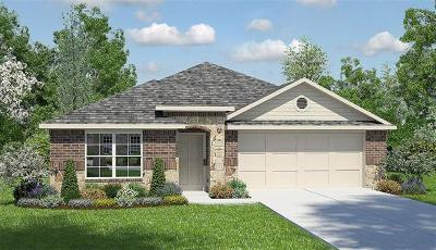 Leander Single Family Home For Sale: 413 Lewisville Ln