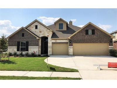 Pflugerville Single Family Home For Sale: 20700 Pinewalk Dr