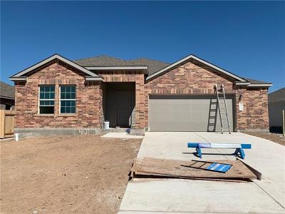 Hutto Single Family Home For Sale: 401 Sassafras St