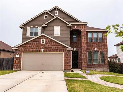 Kyle Single Family Home For Sale: 112 Quinton Cv