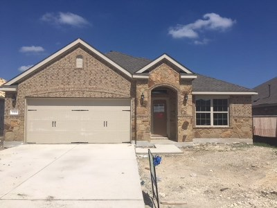 Round Rock Single Family Home For Sale: 3324 Lauren Nicole Ln