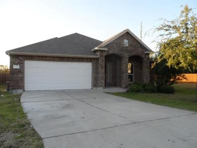 Single Family Home For Sale: 732 Olaf Dr