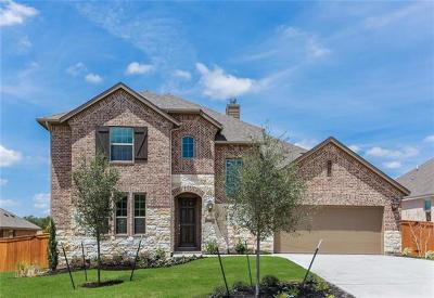 Austin Single Family Home For Sale: 539 Stone River Drive