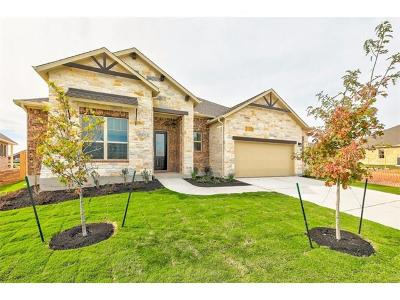 Pflugerville Single Family Home For Sale: 20312 Martin Ln