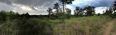 Bastrop County Residential Lots & Land For Sale: 174 Hidden Bluff