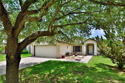 Kyle Single Family Home For Sale: 110 Henke Cv