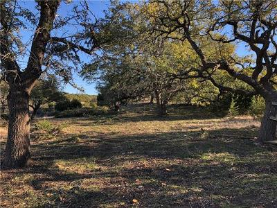 Dripping Springs Residential Lots & Land For Sale: 95 Spring Creek Rd