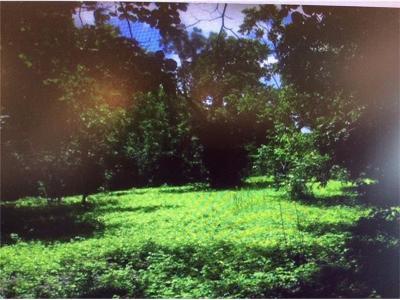 Austin Farm For Sale: 9908 Springdale Rd