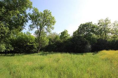 Lockhart Residential Lots & Land For Sale: 501 N Commerce St