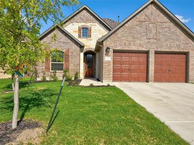 Pflugerville Single Family Home For Sale: 21503 Greylag Dr