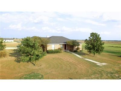 Hutto Single Family Home For Sale: 1335 County Road 134