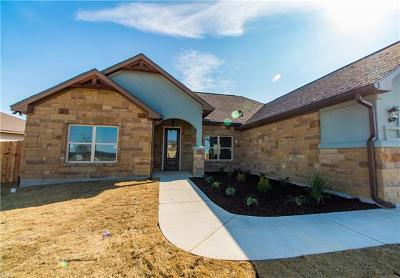 Williamson County Single Family Home For Sale: 316 Western Sky Trl