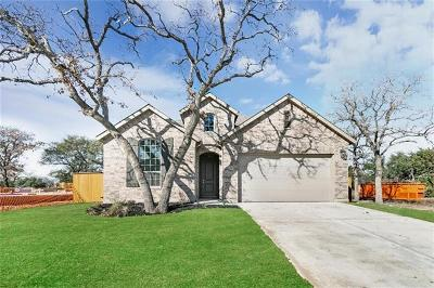 Round Rock Single Family Home For Sale: 840 Whitetail Dr