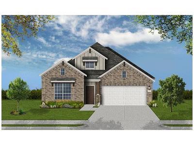 Pflugerville Single Family Home For Sale: 20817 Sand Lark Ln