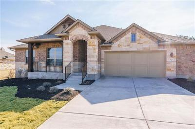 Dripping Springs Single Family Home For Sale: 1117 Bearkat Canyon Dr