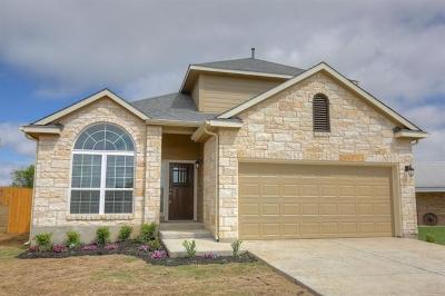 Elgin Single Family Home For Sale: 824 Savannah Cv