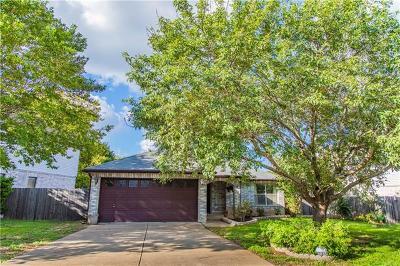 Cedar Park Single Family Home For Sale: 1033 Silverstone Ln