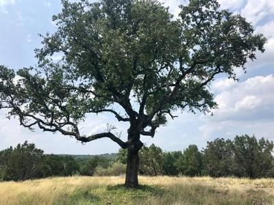 Burnet County Residential Lots & Land For Sale: Spicewood Trails Dr.