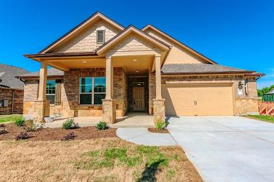 Single Family Home For Sale: 12608 Twisted Root Dr