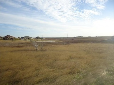 Hutto Residential Lots & Land For Sale: 100 Comanche Cir
