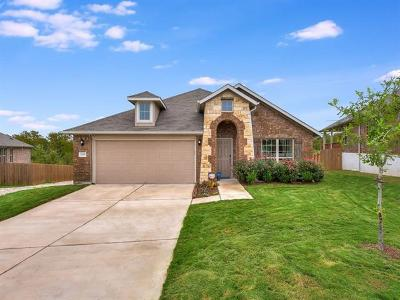 Austin Single Family Home For Sale: 12109 Arran St