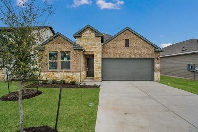 Liberty Hill Single Family Home For Sale: 273 Magna Lane