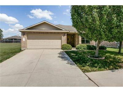 Hays County Single Family Home For Sale: 2395 Green Mdws