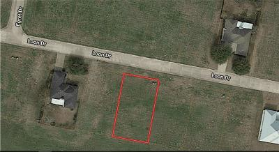 Bastrop Residential Lots & Land For Sale: 115 Loon Dr