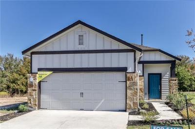 Round Rock Single Family Home For Sale: 2800 Joe Dimaggio Blvd #89