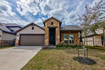 Manchaca Single Family Home For Sale: 13116 Alans Way