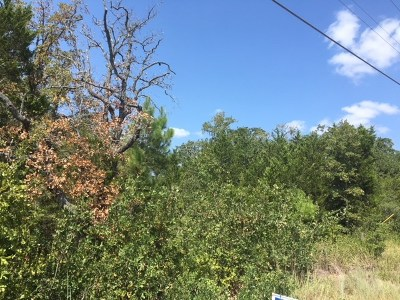 Bastrop County Residential Lots & Land For Sale: Lot 327 Shawnee Dr