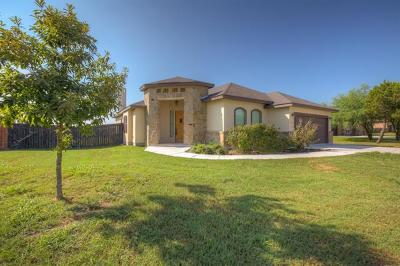 New Braunfels Single Family Home For Sale: 134 River Park Dr