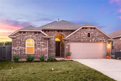 San Marcos Single Family Home For Sale: 137 Pincea Pl