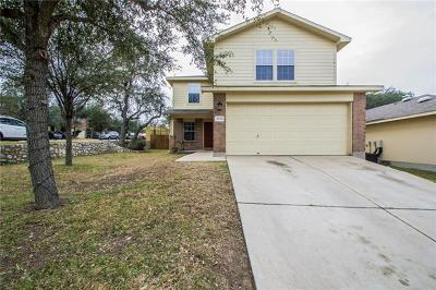 Hays County, Travis County, Williamson County Single Family Home For Sale: 8501 Dittmar Oaks Dr
