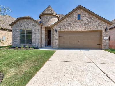 Leander Single Family Home For Sale: 528 Mistflower Springs Dr