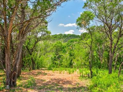 Austin Residential Lots & Land For Sale: 5519 Scenic View Dr