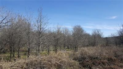 Bastrop Residential Lots & Land For Sale: 114 Waimanalo Dr
