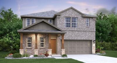 Round Rock Single Family Home For Sale: 6505 Leonardo Cove