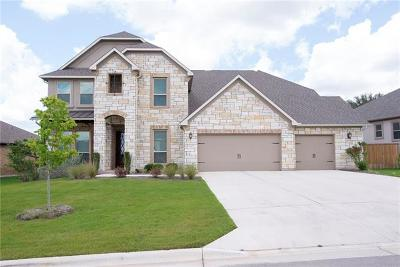 Hays County, Travis County, Williamson County Single Family Home For Sale: 220 Brins Way