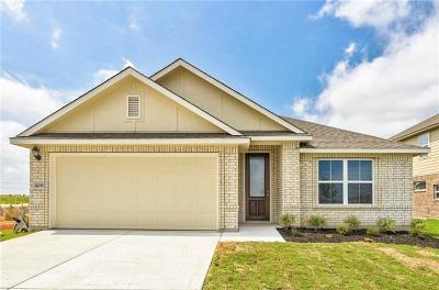 Pflugerville Single Family Home For Sale: 4209 Dutchman Dr