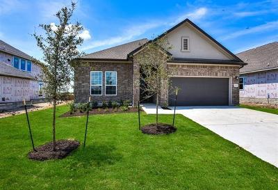 Pflugerville Single Family Home For Sale: 3825 Raven Caw Pass