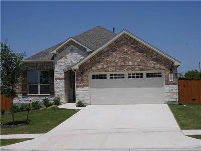 Round Rock Single Family Home For Sale: 3367 De Coronado Trl
