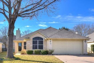 Georgetown Single Family Home For Sale: 207 Village Dr