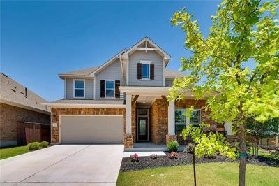Liberty Hill  Single Family Home For Sale: 413 Inspiration Dr