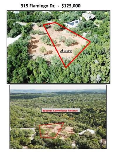 Austin Residential Lots & Land For Sale: 315 Flamingo Dr