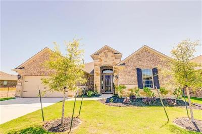 Round Rock Single Family Home For Sale: 4853 Fiore Trl