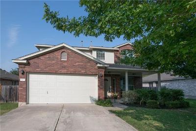 Austin Single Family Home For Sale: 9105 Meyrick Park Trl