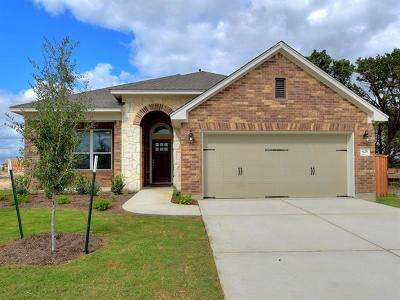Kyle Single Family Home For Sale: 625 Cypress Forest Dr